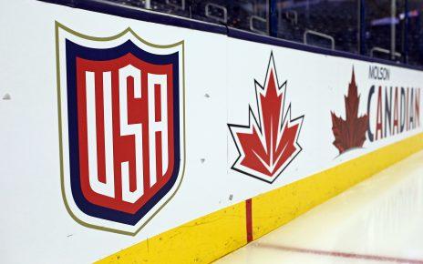 AHL logos hockey's best