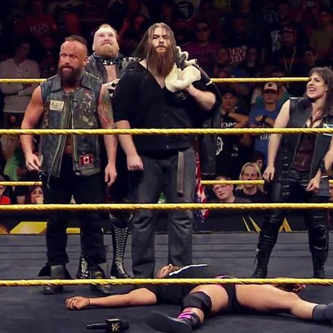 WWE: Sanity can help NXT in more than one way heading into ...