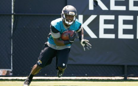 Jacksonville Jaguars wide outs