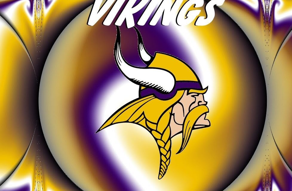 Minnesota Vikings 3 Questions