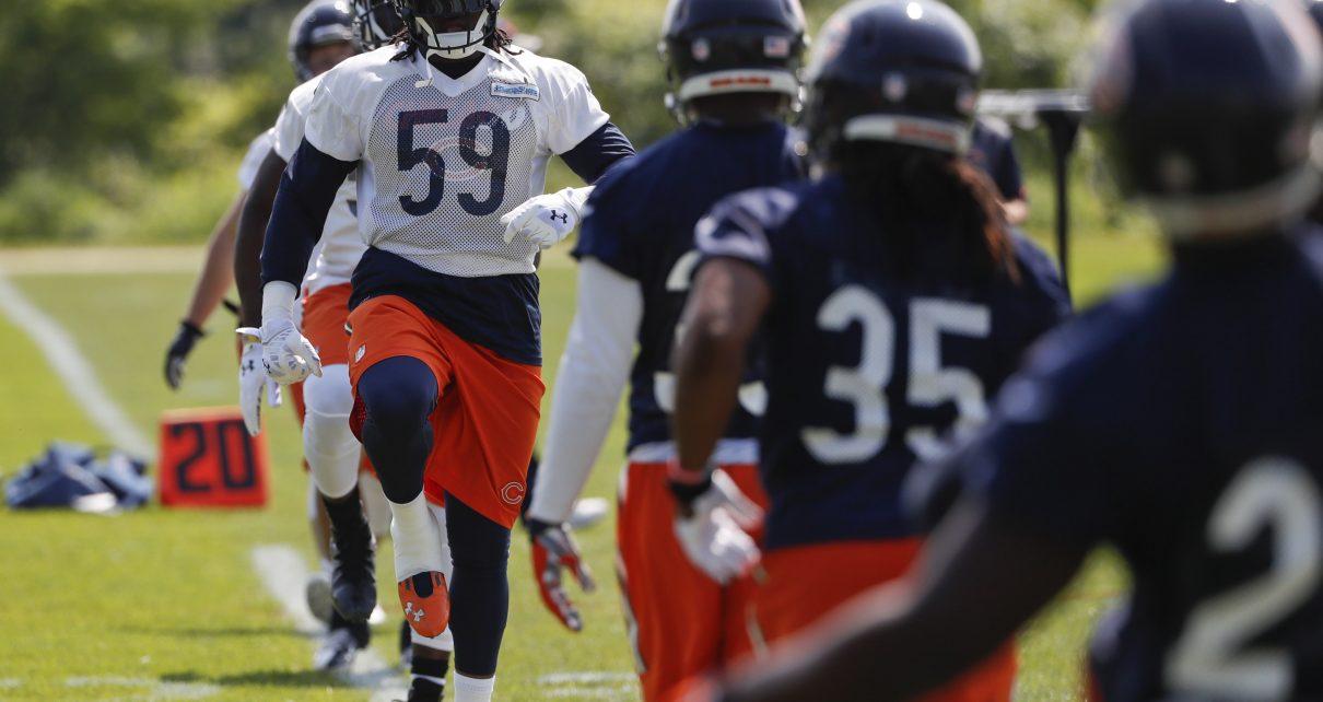 Chicago Bears LB Danny Trevathan