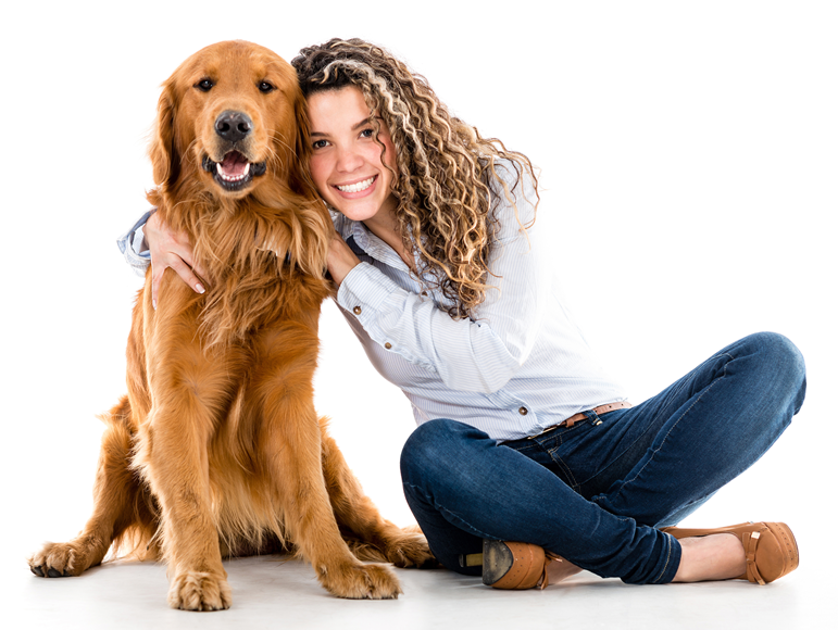 How To Get Your Dog Certified As A Companion Dog