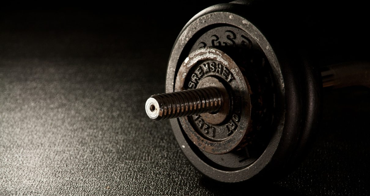The high pitched fitness business initiative of pleasanton gym