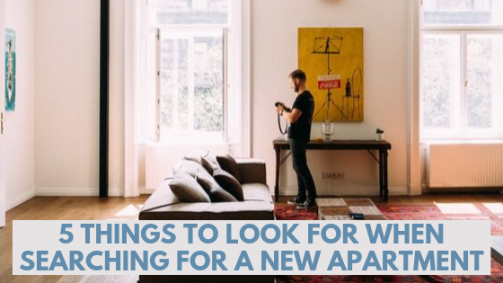 Crucial Things to Look for in Your Apartment Search